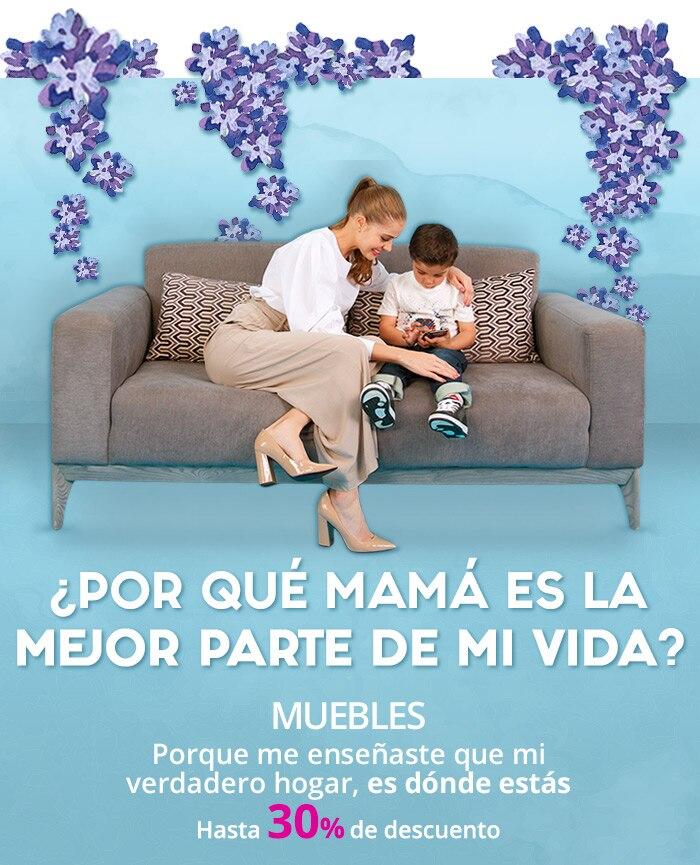 Muebles   Día de Las Madres